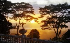 Ash-SRI-Sunset-RESIZED