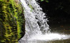 Borneo-Rainforest-Lodge-BOR-Natural-Jacuzzi-Pool-view-resized