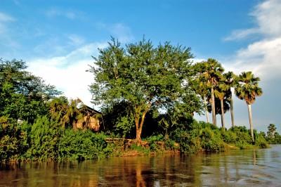 Selous Impala Camp, Selous