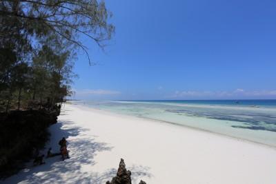 Unguja Beach