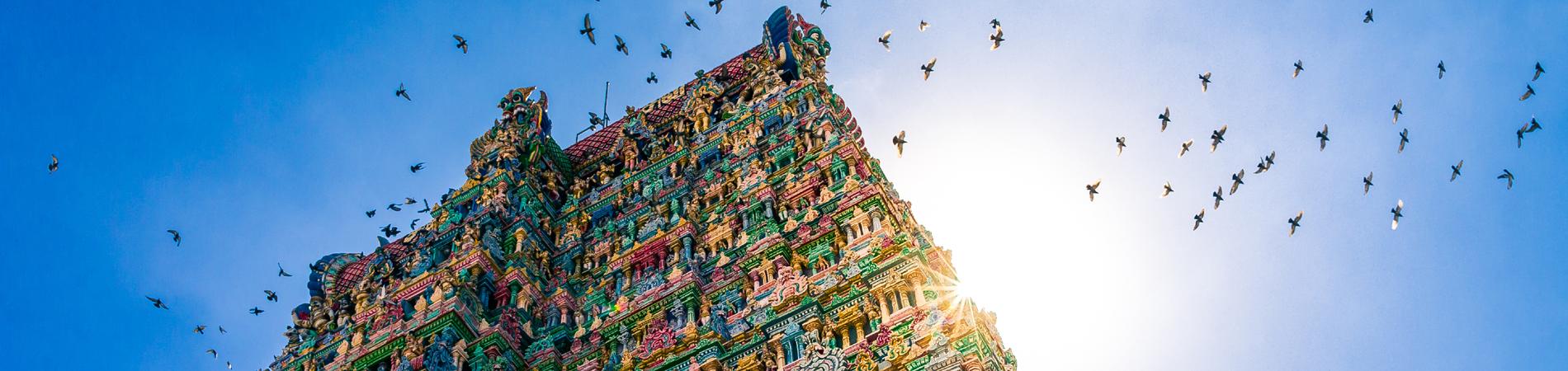 shutterstock ind madurai colours header