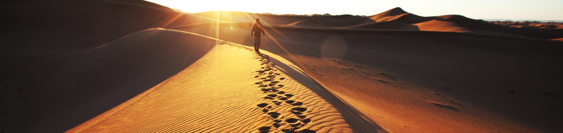 shutterstock nam dune walk header