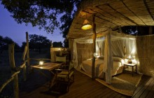 The wild Jackalberry Tree house bedrooms