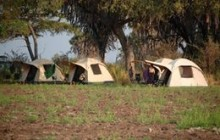 Dome tents, fly camping with Authentic Tanzania