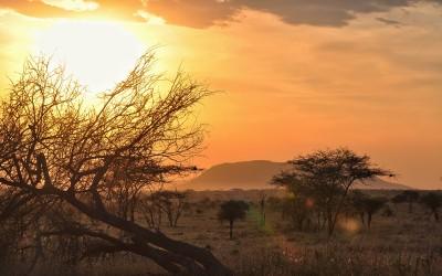 Chaka - TZ - Serengeti - Sunrise