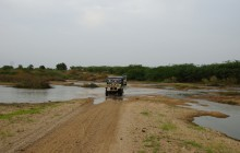 A Jeep safaris at Chanoud Garh