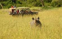 Exciting game drives at Enkewa Mara