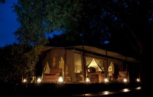 A bushcamp under the stars!
