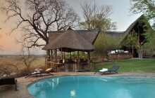 The refreshing pool at Muchenje Safari Lodge