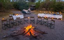 A fantastic bush dinner with Machaba