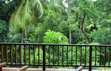 Balcony view, Jim's Farm Villas